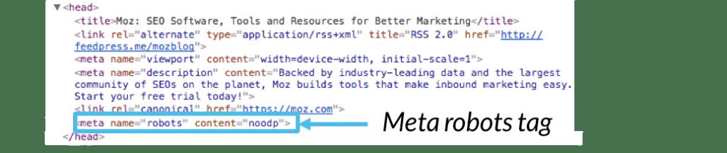 Meta Robots Tag Code