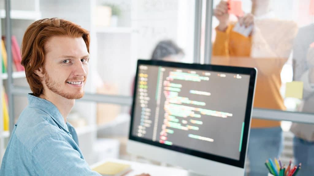Wordpress Developer gesucht